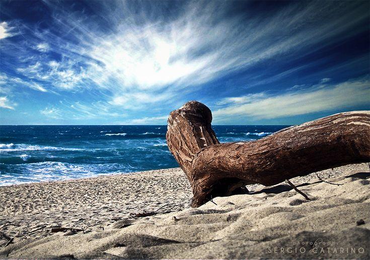 Nature's Rest by SergioCatarino on DeviantArt