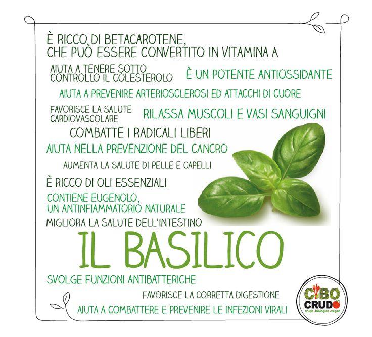 ✔ Benefici del Basilico