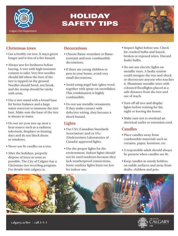 Calgary Fire Department Holiday Safety Tips Download PDF