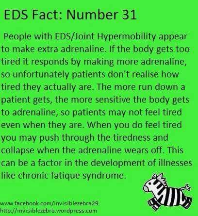 EDS: Adrenaline & Exhaustion.