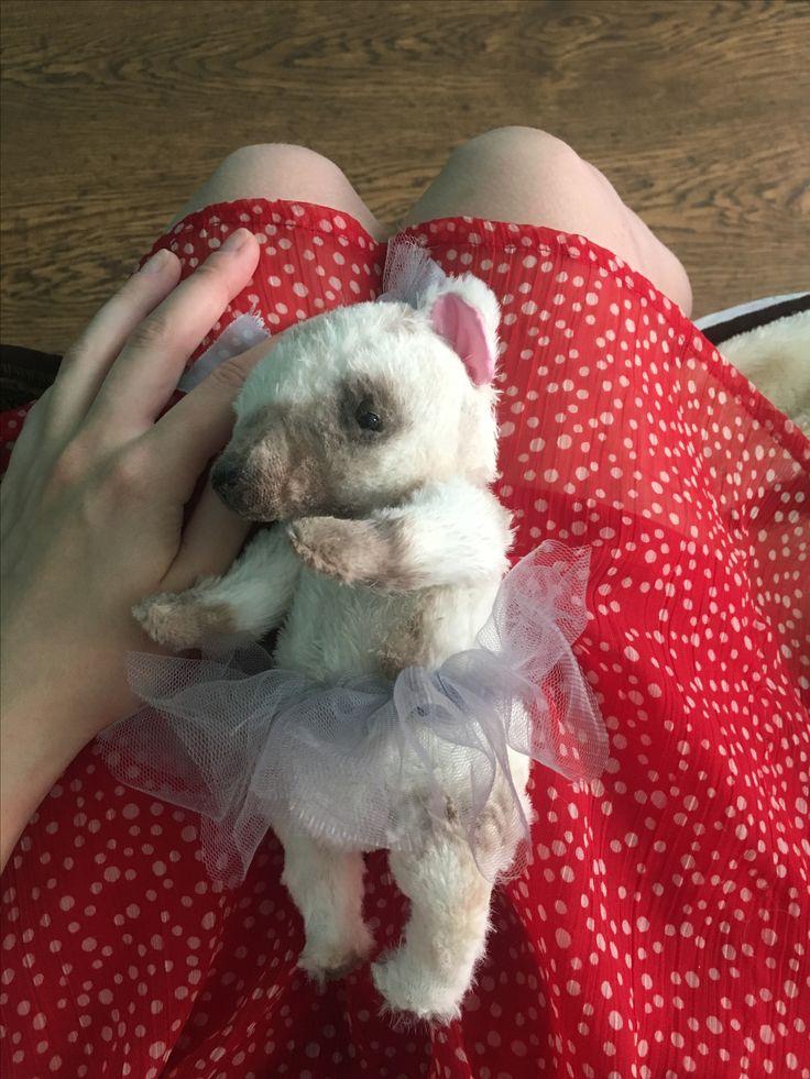 Teddy bear for Nastya