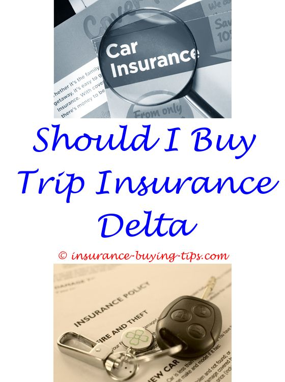 buying liability insurance as a personal trainer - is it a good idea to buy pet insurance.buy green card insurance how to buy ppo health insurance buy auto insurance online geico 5328407069