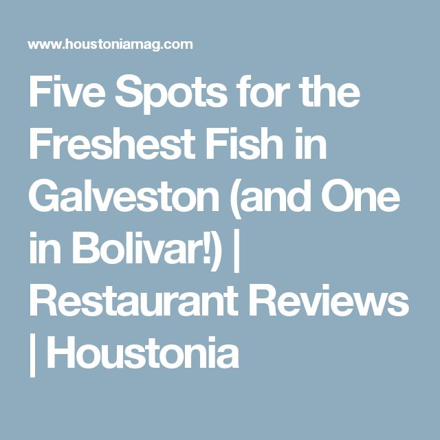 Five Spots for the Freshest Fish in Galveston (and One in Bolivar!)   Restaurant Reviews   Houstonia