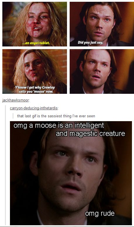 "And Sam's is completely offended, like ""God Meg, how could you be so stupid?!""  #supernatural"