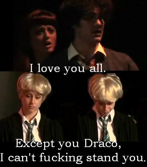 "AVPM A Very Potter Musical Harry Potter- ""I love you all. Except you Draco, I can't fucking stand you."" Holy Shit this cracks me up to no end."