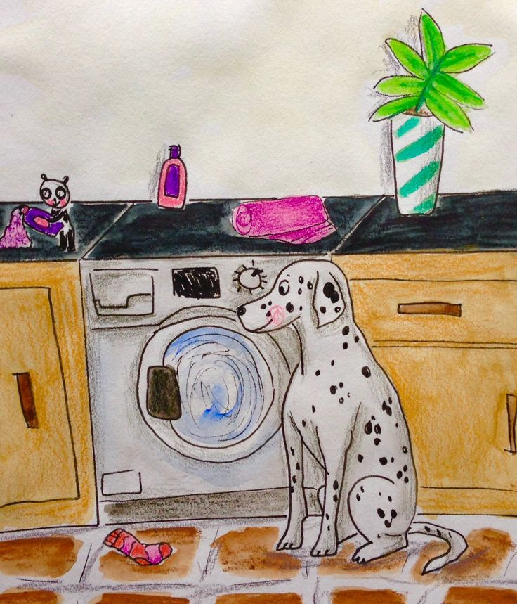 A Dalmation Dog doing his laundry by Hannah Robinson