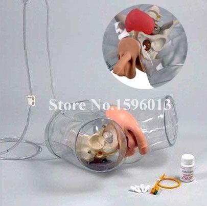 364.80$  Buy here - http://ali5b3.worldwells.pw/go.php?t=32711698835 - Transparent Male Catheterization Model,Urinary Catheterization Training Simulator