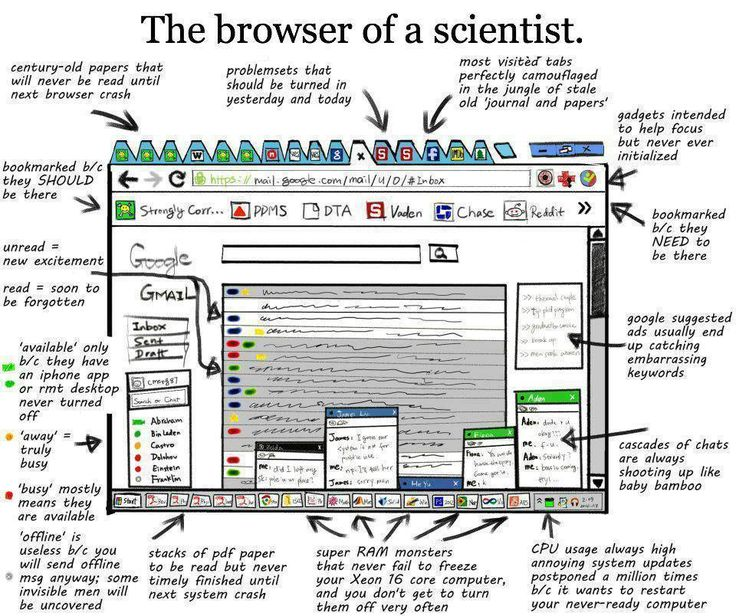 The browser of a scientist