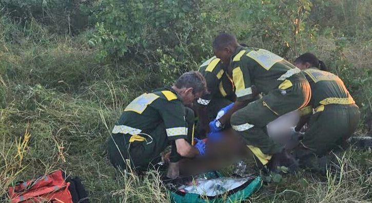 #DÜNYA Güney Afrika'da fil saldırısı... Ölü ve yaralılar var: Güney Afrika'da fil sürüsünün saldırdığı vahşi yaşam parkı çalışanlarından…