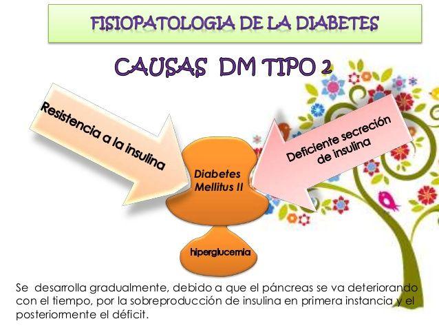 Diabetes mellitus tipo 2 MANIFESTACIONES CLÍNICAS DM TIPO 2 Con frecuencia, las personas con diabetes tipo 2 no presentan ...