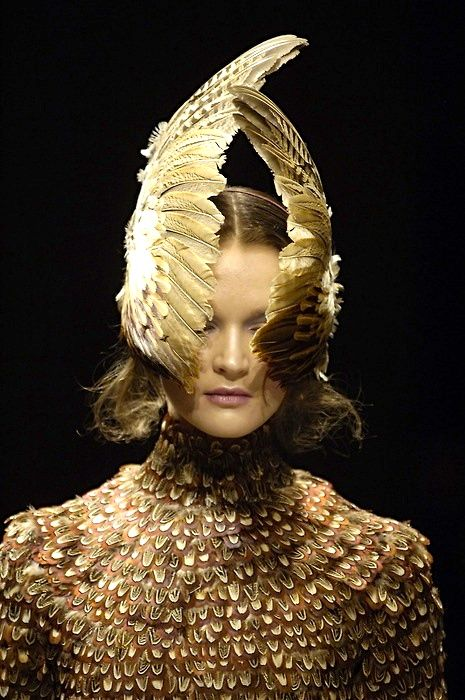 Fashion birds of feather - courtesy of McQueen