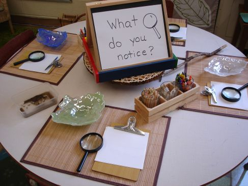 """What do you notice?"" Science Center - Fill the bowls with items to be observed with the materials at the station. Integration of science inquiry, five senses, writing, etc."