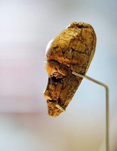 The oldest known portrait head of a woman, carved in ivory some 26,000 years ago. It was discovered in the 20s in Dolní Věstonice, a valley in present-day Moravia that was teeming with mammoth and reindeer in the last ice age.