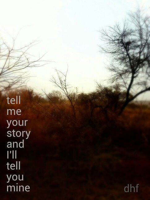 Tell me your story and I'll tell you mine - die heuwels fantasties lirieke ... agtergrond - Limpopo bosveld (winter)