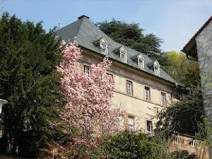 European Study Center blog