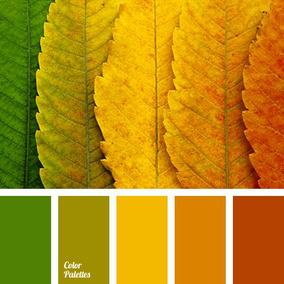 bright and expressive color gamma associated with beautiful and a bit melancholy season of the year