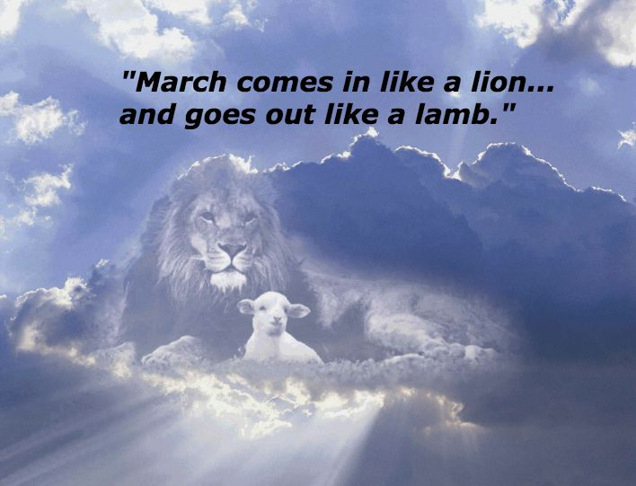 March Comes In Like And Goes Out Like >> Quote Of The Week March Comes In Like A Lion Goes Out Like A Lamb