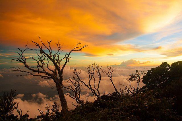 Laban Rata views | Flickr - Photo Sharing!