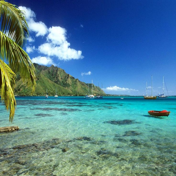 Moʻorea is a high island in French Polynesia, part of the Society Islands,  17 km (roughly 9 mi) northwest of Tahiti. Its position is