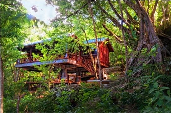 Secret Bay Eco Resort, Dominica. Architect Fruto Vivas