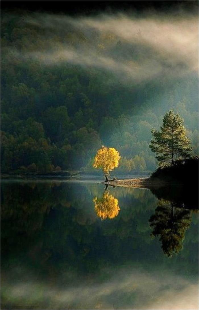 espejo natural, Reflejos agua. simetría.