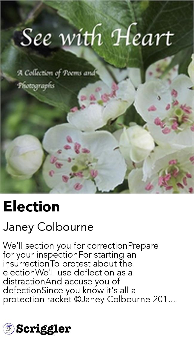 Election by Janey Colbourne https://scriggler.com/detailPost/story/48097 We'll section you for correctionPrepare for your inspectionFor starting an insurrectionTo protest about the electionWe'll use deflection as a distractionAnd accuse you of defectionSince you know it's all a protection racket ©Janey Colbourne 201...