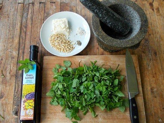 Unkrautgourmet: Giersch-Pesto - ein echtes Unkrautgourmet-Rezept