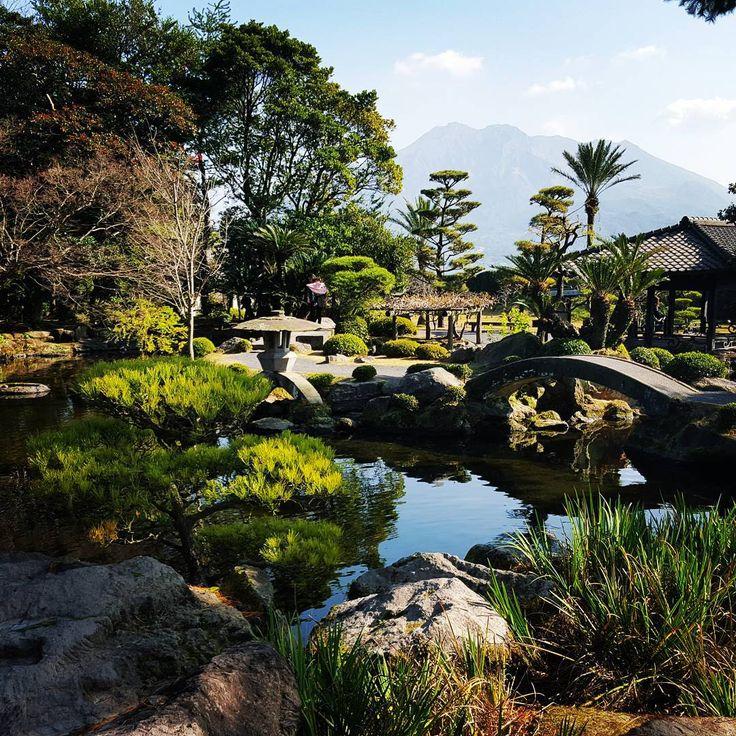 In love with this stunning place I get to call home. #japan #kagoshima #zen #garden #life #serenity #contemplation #volcano #senganen #zengarden #shimadzu #peace #tranquility #sakurajima @ajet_connect #share_kago #instagramjapan