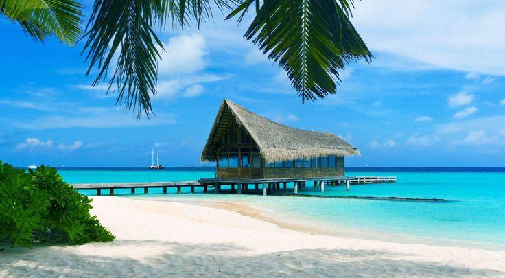 Фото: Багамские острова Путешествие и Отдых на побережье Атлантического океана в Вест-Индии Куда поехать отдыхать Что…