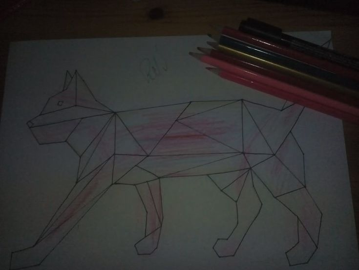 my draw :) What do you think ? :) #cat #colors