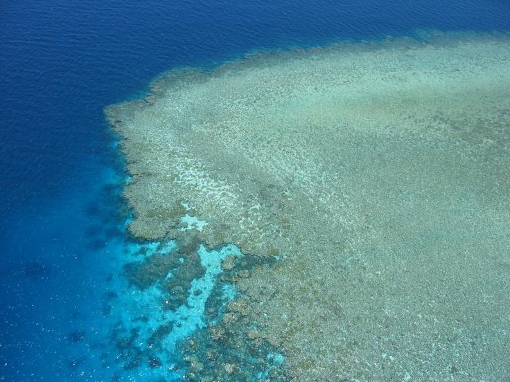 Great Barrier Reef (Agincourt), Queensland