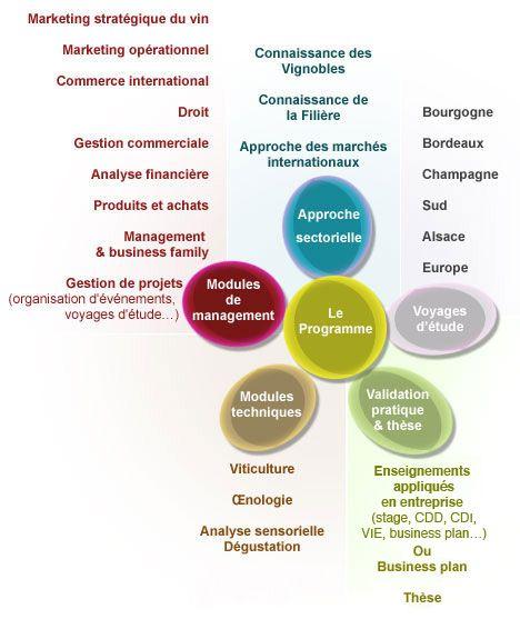 Contenu du Mastère Spécialisé en Commerce International des Vins et Spiritueux à l'ESC Dijon