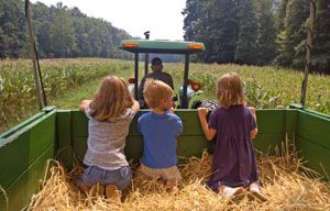 barnyard party activities ideas here (fill wagons with hay and take the kiddos for a hay ride!, etc.)