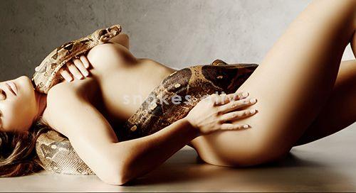 nude hairy pussy midgets