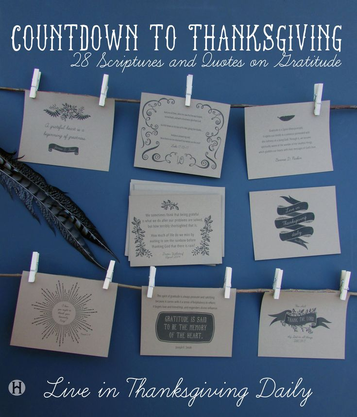 28 Thanksgiving Scriptures and Quotes