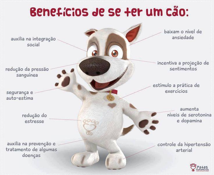 Nossos Pets nos dão amor, alegrias e ainda fazem bem pra nossa saúde!!! Sim, é impossível não se apaixonar por eles! Quem concorda compartilha! Foto: Patas Therapeutas