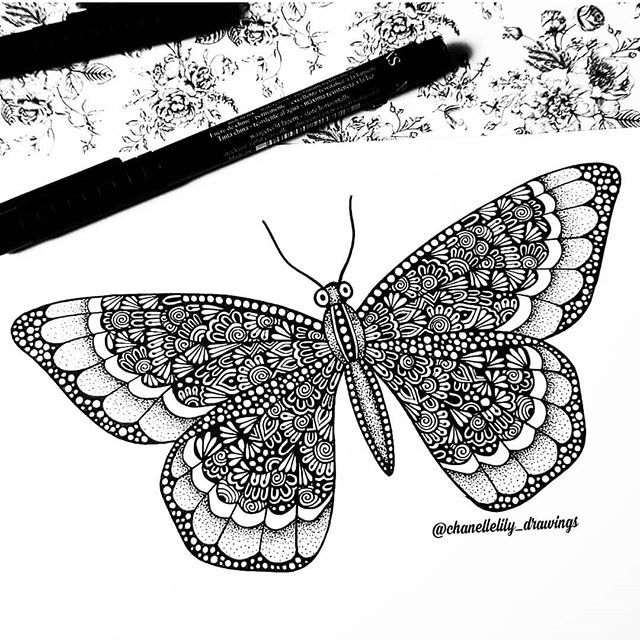 Finished Butterfly Zentangle I Love Doing These Animal Zentangles Gorgeousmandalas Man Butterfly Mandala Butterfly Drawing Butterfly Coloring Page