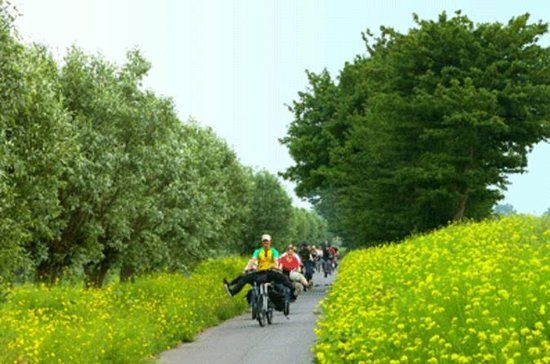 Amsterdam countryside bike tour with cheese tasting clog making and famous windmill