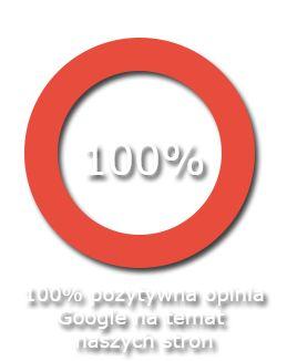 pozycjonowanie serwisów www