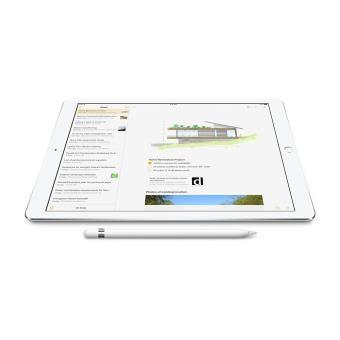 iPad Pro + Stylet