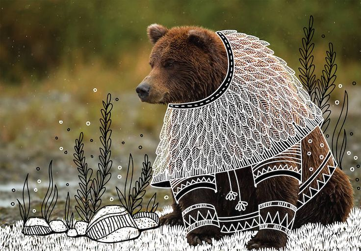 Wild Animals with Funny Drawings of Costumes  The Indian illustrator Rohan Sharad Dahotre highlights wild animals that adopt a funky and totally unexpected style. Photographs of animals that are found by the artist before being customized his own way. Costumes jewels and settings are therefore drawn with a pencil and added to the original picture for an amusing project titled Animal Doodles.           #xemtvhay