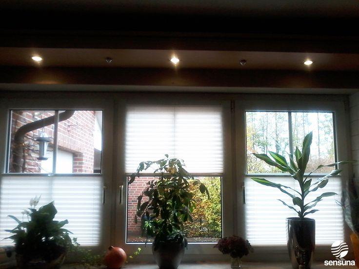 New sensuna Plissees als Sichtschutz im Wohnzimmer sensuna pleated blinds as camouflage in the