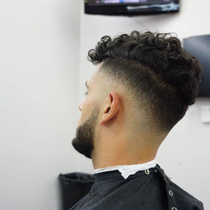 men's short haircuts curly hair, pictures of mens short haircuts, men's short haircuts thin hair, men's short haircuts with beards, men's short haircuts style, images of mens short haircuts, short mens haircuts for long faces, men short haircuts, male short haircuts asian, male short hairstyles asian, male short afro hairstyles, mens haircut short back and sides long fringe, hudson's guide for men's short haircuts and the barber shop, male short haircuts blonde, men's haircut short back and…