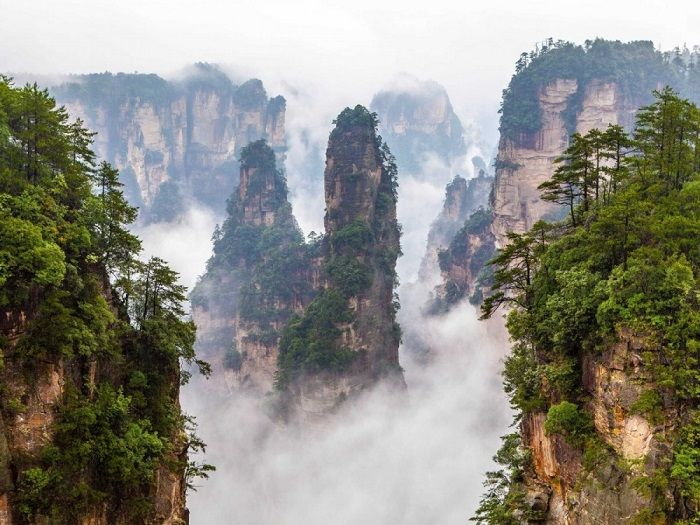 Каменные столбы невероятной высоты, верхушки которых величественно возвышаются над лесом