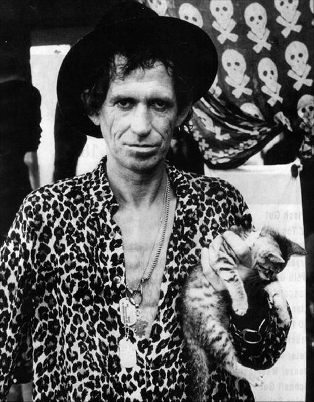 Photo of Keith Richards & his  Cat