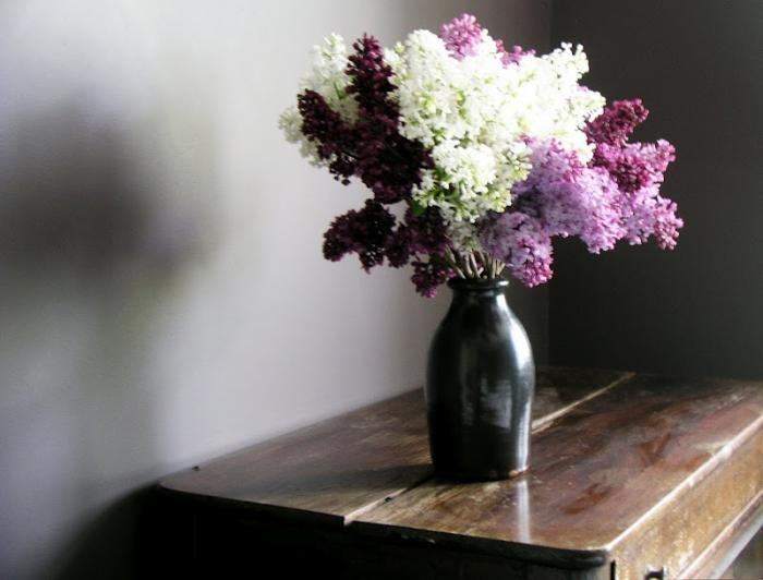 oh lilacs.  i adore you.