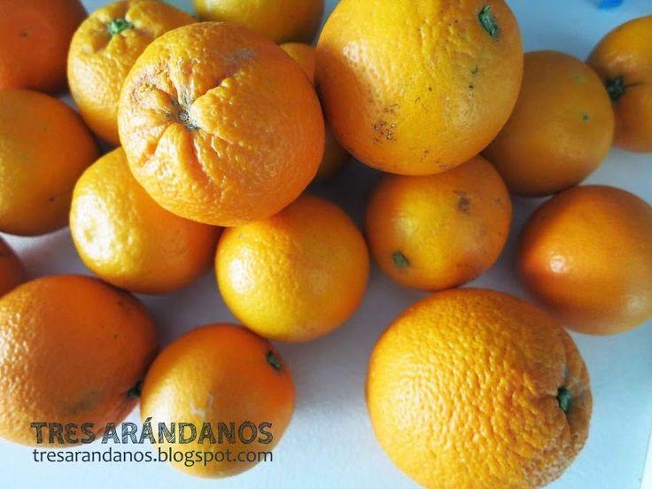 ¿Te apetece elaborar, por primeriza vez, tu propia mermelada de naranjas? ¡Descubre cómo aquí!