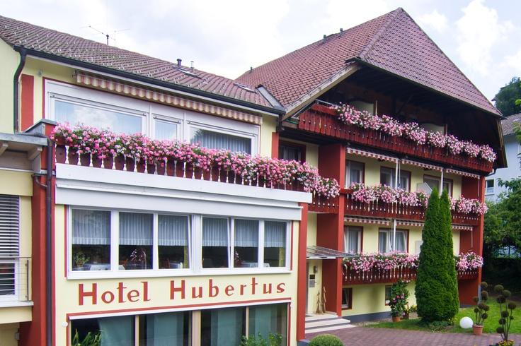 Unser familiär geführtes 3 Sterne Superior Hotel Garni befindet sich zentral, in der Nähe der Kurmittelhäuser im Ortsteil Bad Peterstal - im Schwarzwald. Die  schöne und ruhige Lage wird von unseren Gästen besonders geschätzt. Inmitten einer herrlichen Waldlandschaft, umgeben von idyllischen Seitentälern und reizvollen Höhenzügen ist unser Hotel der ideale Ort für Wanderer, Urlauber und Leute, die sich einfach erholen möchten.