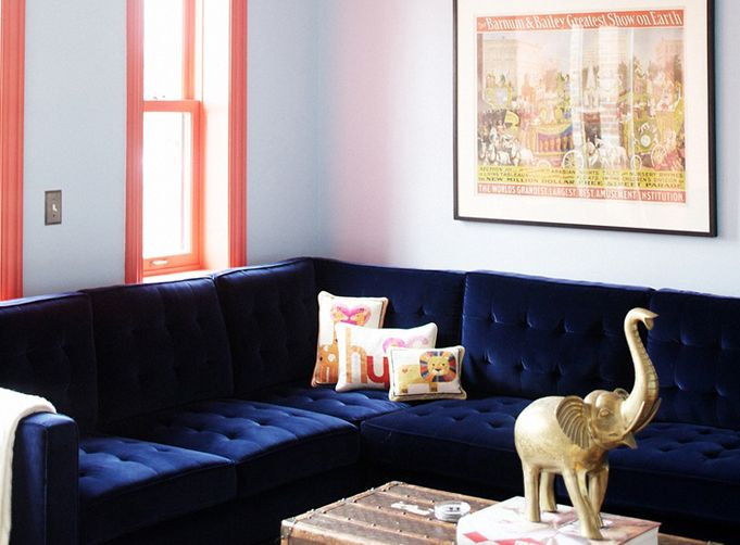 navy blue velvet couch and coral window trim in a living room iu0027m not a fan of the trim but i love that colour combo and the trunk for a coffee table