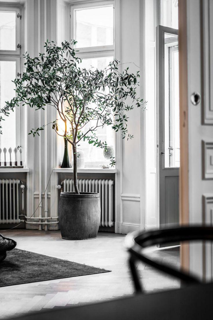 Kika in hemma hos Lotta Agaton | Henrik Nero